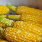 Ціни на кукурудзу зросли